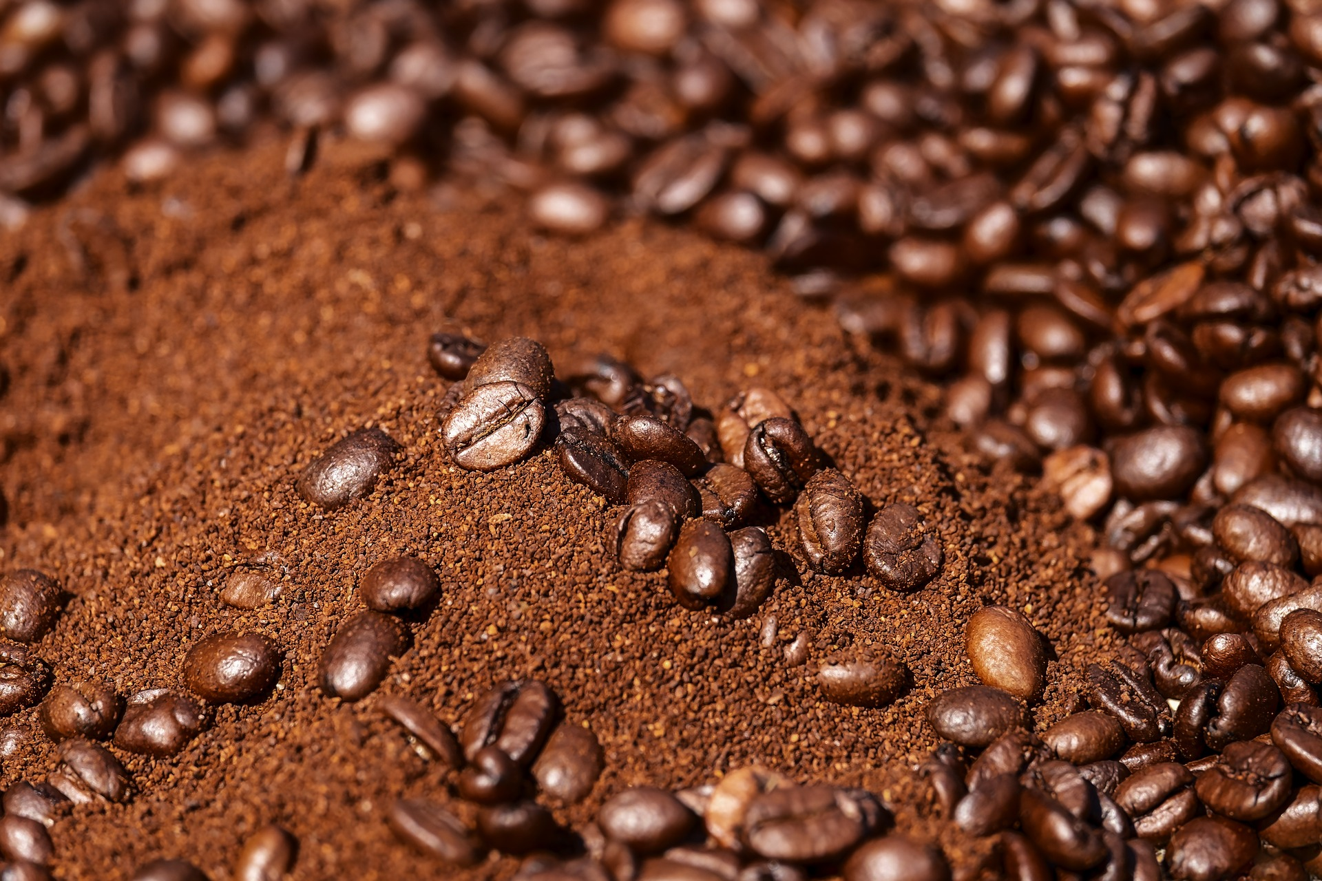 Roasted coffee bean S18 (coffeemaker)
