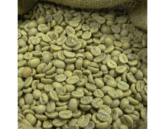 Aribica coffee bean S18