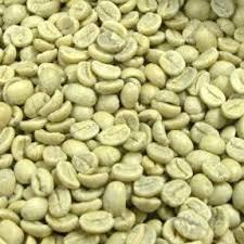 生罗布斯塔咖啡豆 S16